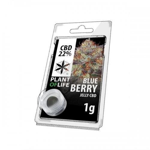 JELLY AU CBD 22% BLUEBERRY 1g
