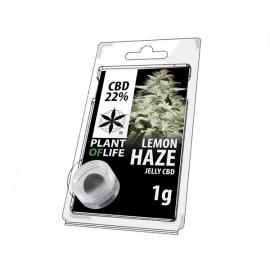 JELLY AU CBD 22% LEMON HAZE 1g