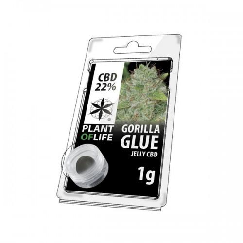 JELLY AU CBD 22% GORILLA GLUE 1g