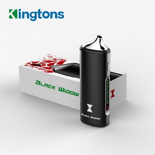 vaporisateur Kingston