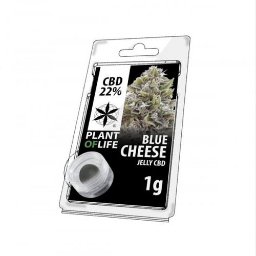 JELLY AU CBD 22% BLUE CHEESE 1g